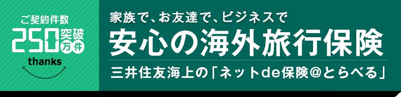 家族で、お友達で、ビジネスで 安心の海外旅行保険 三井住友海上の「ネットde保険@とらべる」
